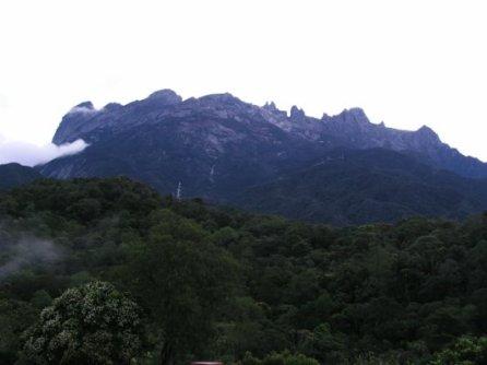 Borneo 080