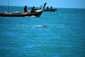 Kanom 082_watermark