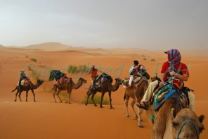 Sahara-3