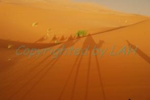 Sahara-5