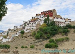 Ladakh-11
