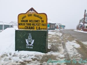 Ladakh-16