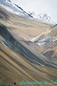 Ladakh-21