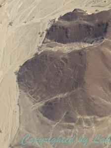มนุษย์หัวนกเค้าหรือมนุษย์อวกาศ ที่บนหน้าผาแห้งแล้ง หนึ่งใน Nazca Lines อันลือชื่อ