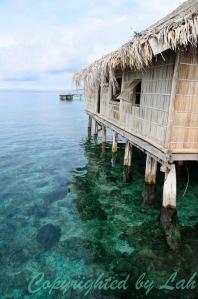 Abundant coral reef under the hut