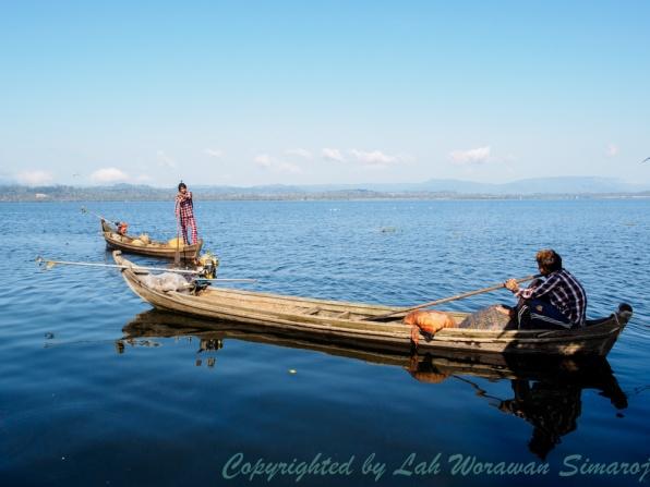 Local fishing boats.