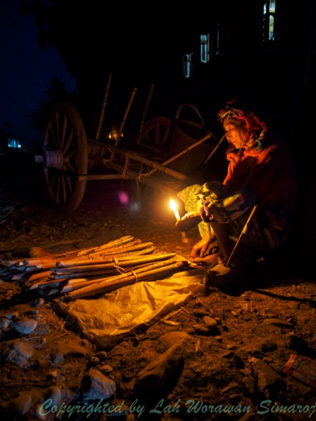 An old lady selling Rattan Palm stems in a village night market