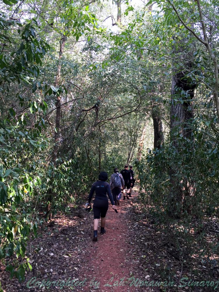 ทางเดินในป่าเพื่อไปยังจุดเริ่มต้นก่อนการดำน้ำตื้นล่องไปตามลำน้ำสีเงิน Rio de Prata