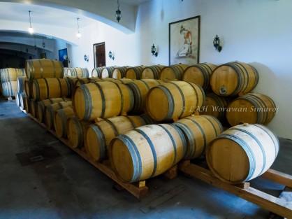 Wine factory.