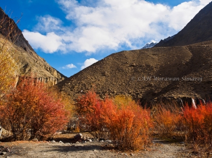 Lhunjerab National Park