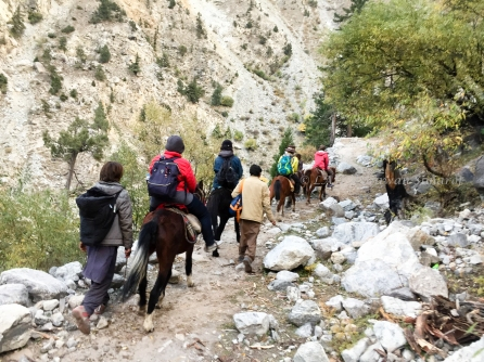 Tourists on the horses, locals walk.